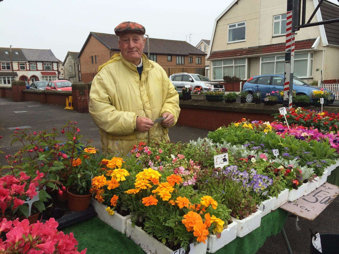 Plants at Cleveleys Community Centre