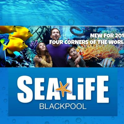 NEW for 2019 at SEA LIFE Blackpool