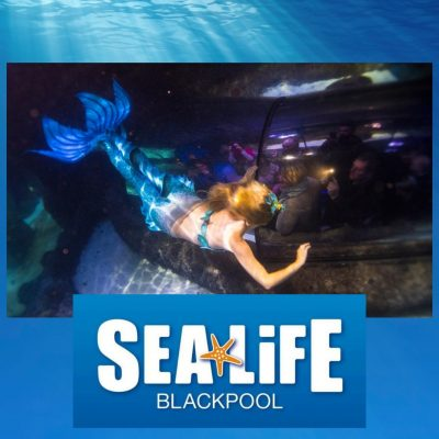 Pirates and Mermaids at SEA LIFE Blackpool