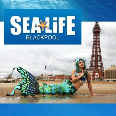 Pirates and Mermaids at SEA LIFE Blackpool