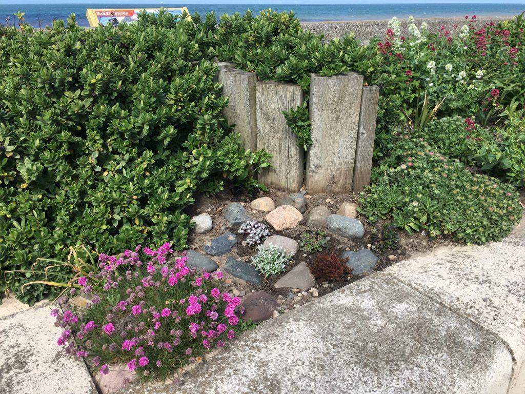 Planter at Rossall Beach