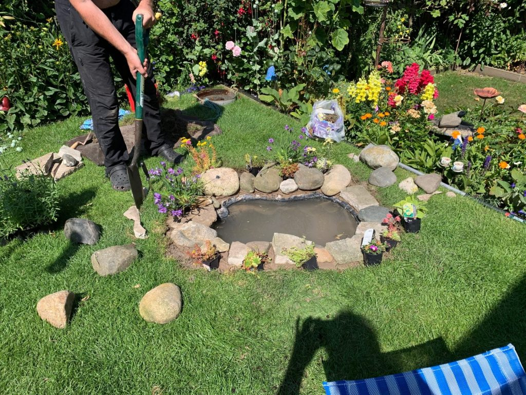 Building a Wildlife Pond