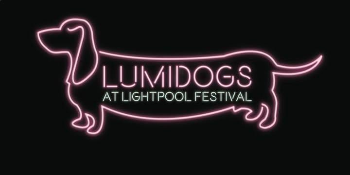 Lumidogs Workshop at Houndshill Shopping Centre