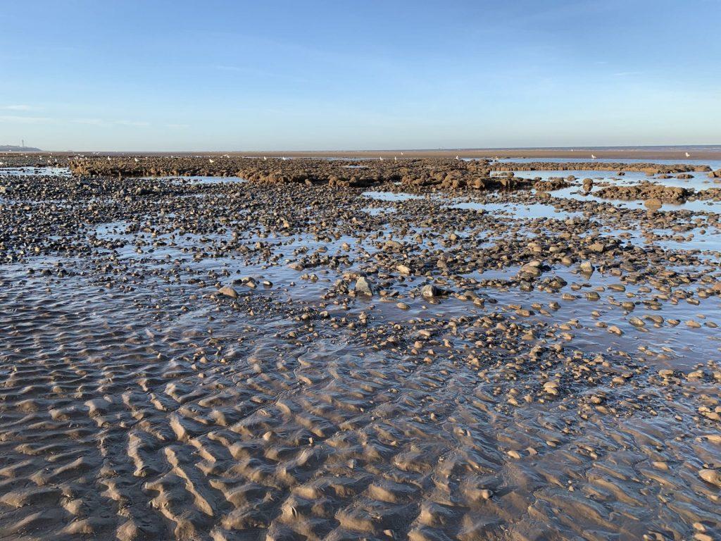 Mud on the beach