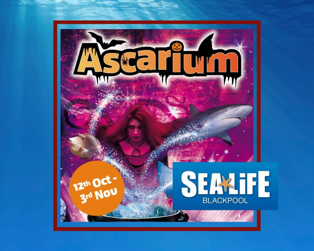 Ascarium 2019 at Sea Life Blackpool